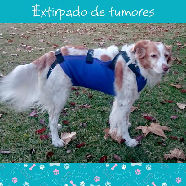 extirpado-tumores